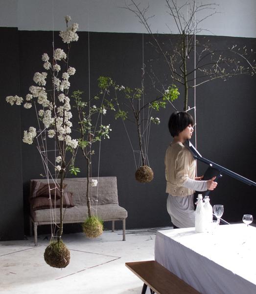 la nature dans la maison leo le pirate. Black Bedroom Furniture Sets. Home Design Ideas