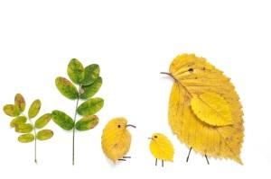 птицы из листиков