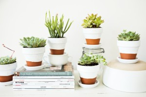 DIY_ Painted Pots_1