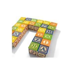 cubes-en-bois-francais B